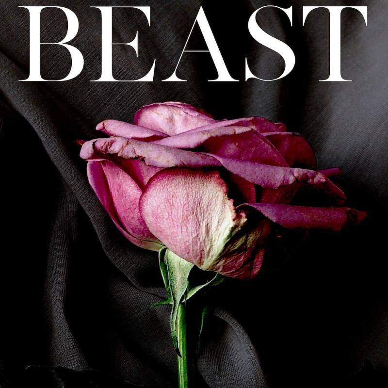 Secret Beast by Amelia Wilde